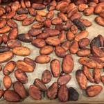 Square medium fill 949fac2067 beans