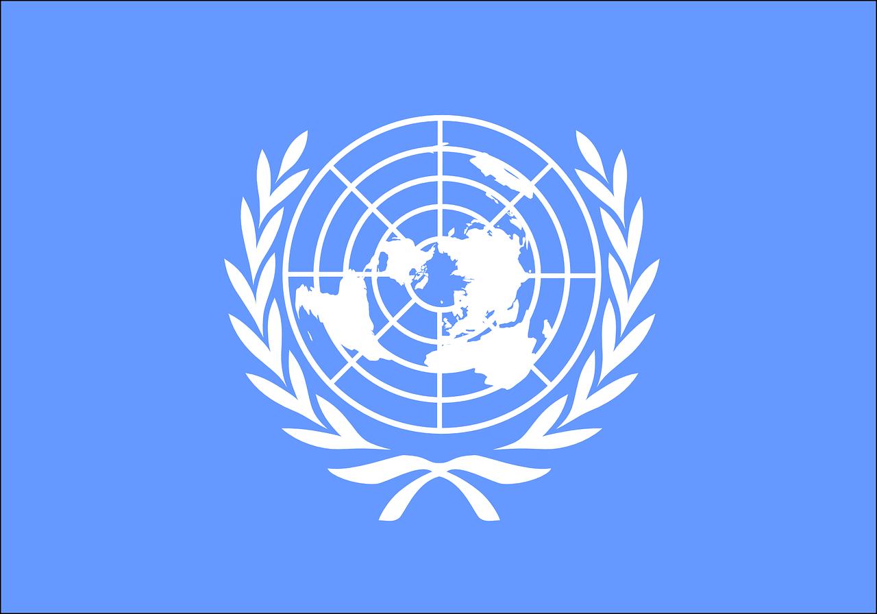 簡単解説】国連って何をする所?機関の役割や活動を分かりやすくまとめ ...